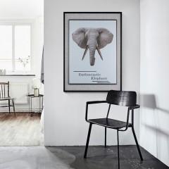 易玻商城动物世界犀牛大象玻璃装饰画二联画三联画客厅卧室